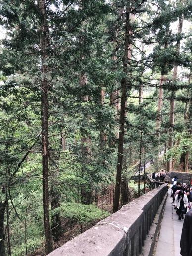 Vue en haut du sanctuaire Toshogu